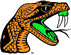 Florida A&M Logo